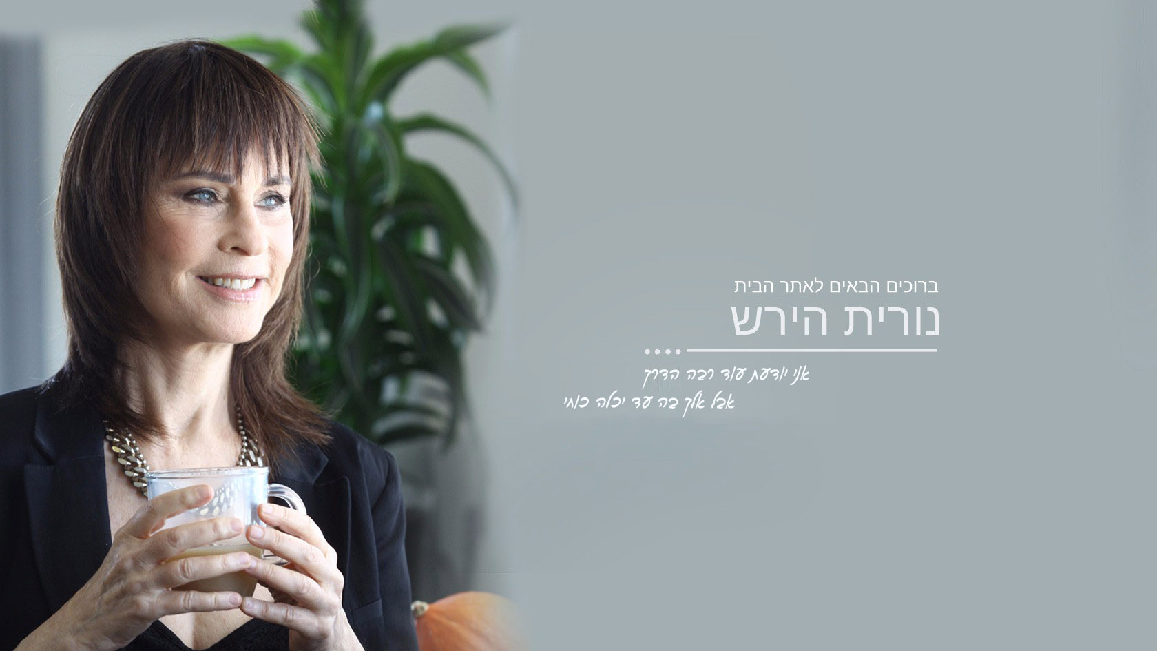 nurit-home22